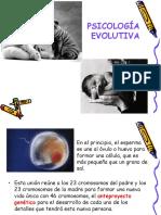 DESARROLLO CONCEPCION.ppt