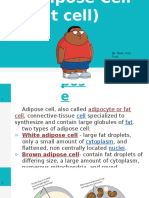 adipose cell