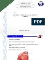 Anatomia y Biomecanica de Hombro y Brazo