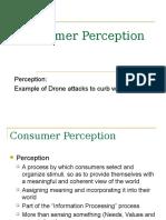 Consumer Perception (marketing subject).ppt