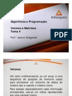 VA Algoritimos e Programacao Aula 4 Tema 4