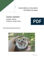 Ouriço Cacheiro.pdf