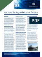 RA08SafeMooringPracticeSpanish (1).pdf