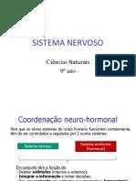 10Sistema Nervoso.pdf