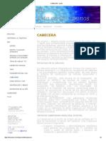 CABECERA - ipcotv