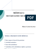 Módulo 3 Metabolismo Microbiano