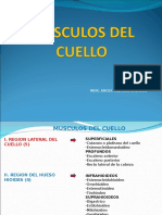 2 Clase MIOLOGIA Musculos Del Cuellov