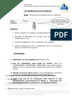 8° ARQUITECTURA GUIA DE OBSERVACION DE UN EDIFICIO