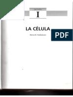 02-Lacelula.pdf