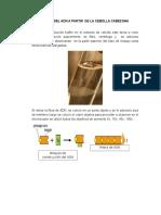 Extracción Del ADN a Partir de La Cebolla Cabezona