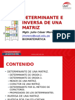 Determinante e Inversa de Una Matriz.