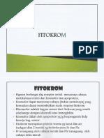 4) Fitokrom_Sitokrom