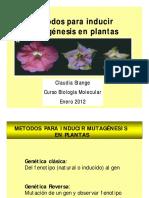 Mutag Nesis en Plantas11