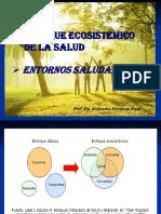SESIÓN 7 - Enfoque ecosistémico. Entornos saludables