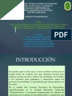 diapositivas_PROY_7