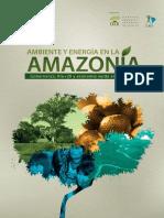 Ambiente y Amazonia