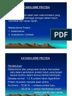 Pengertian dan Proses Metabolisme Protein yang Terjadi Dalam Tubuh