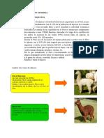 80137075-Plan-de-Negocio-de-Chompa-de-Alpaca-II.docx