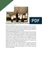 Evaluación lineal del ganado lechero.docx