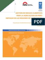 crm_peru_es.pdf