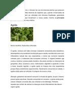 Principais plantas medicinais