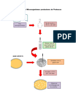 Aislamiento-de-Microorganismos-productores-de-Proteasas.docx