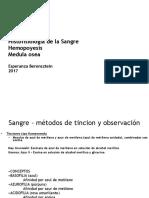 sangre medula osea enviar-1.pdf