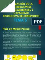 TEMA 5 ESTIMACIÓN DE LA DISTRIBUCIÓN DE PERMEABILIDADES Y CAPACIDAD.pdf