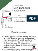 Vulnus Morsum Dog Bite