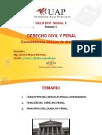 CLASE 5 Derecho Penal, Caracteristicas