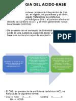 Fisiologia Del Acido-base Expo 2 Bioquimica