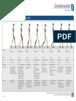 400w43_e_poster_gangphasen_druck.pdf