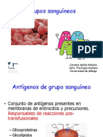Presentación Práctica Grupos Sanguíneos