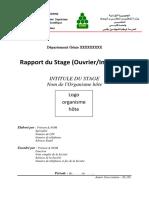 Modele Rapport Stage ENIG