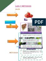Materiales y Métodos.docx Tomate
