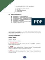 SEGURIDAD PENITENCIARIA Y DE FRONTERAS-arre.doc