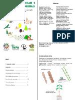 Cartilha Sementes e Agroflorestas CIFCRSS