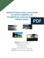 informe matriz de leopold.doc