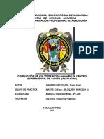 Informe Final de Pv