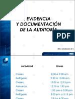 4.5 documentacion de hallzgos auditoria.pdf