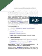 Los Instrumentos de Gestión Ambiental y La Minería-1