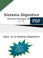 Sistema Digestivo MVM