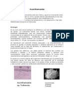 Acanthamoeba-Monografia