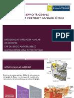 3ra Rama Del Trigémino, PDF