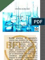 CARTILLA  BPl fisicoquimica.pptx