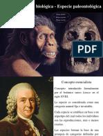 03 - Especie Biológica vs. Paleontológica