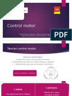 Control Motor