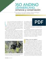 09_OsoAndino.pdf
