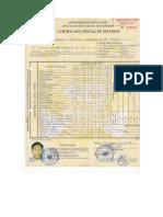 certificados de estudio.docx