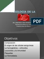 Sangre Presentacion